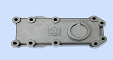 ZF Cover